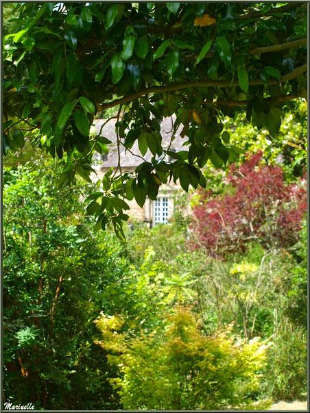 Le Manoir derrière une trouée dans la végétation- Les Jardins du Kerdalo à Trédarzec, Côtes d'Armor (22)