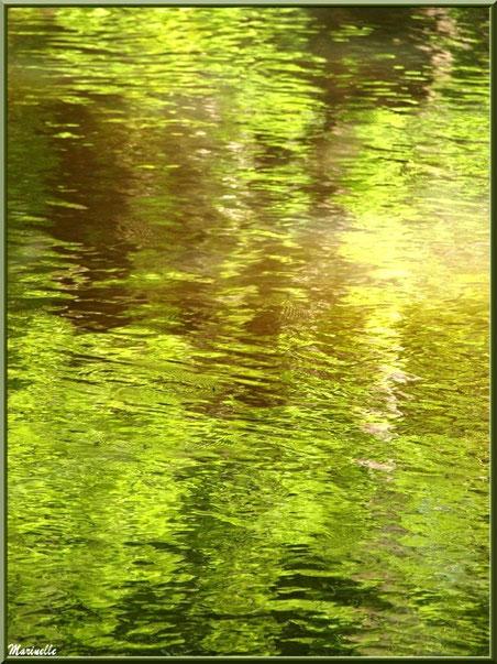 Reflets impressionnistes sur La Leyre, Sentier du Littoral au lieu-dit Lamothe, Le Teich, Bassin d'Arcachon (33)