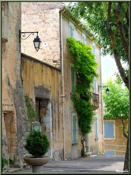 Ruelle verdoyante et vieilles façades - Goult, Lubéron - Vaucluse (84)
