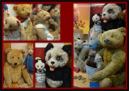 auch die alten Bären durften mitfeiern