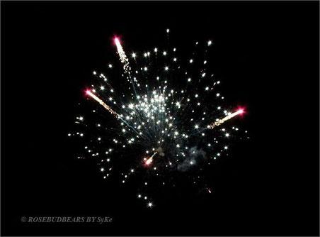 Feuerwerk Fa. Rohr