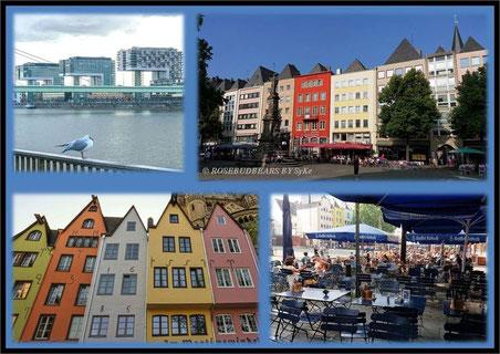 In Köln gibt es moderne Häuser am Rheinufer und alte in der Altstadt