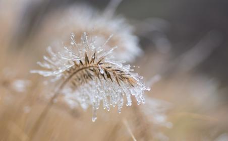 Nebel Eis Winter Licht Farben Emanuel Niederhauser pic4you