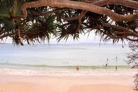 Noosa, Little Cove Strand, Australien