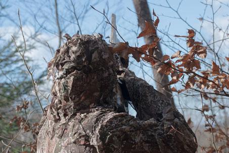 Blog zur Lockjagd auf Tauben Krähen und Kormoran
