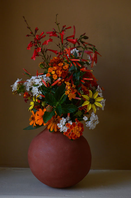 monday vase, in a vase on monday, iavom, small sunny garden, amy myers, desert garden, berlandiera, lantana, cuphea, justicia, chrysactinia, russelia, photography, ceramics, handbuilt, earthenware