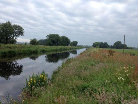 Der Sauteler-Kanal bei Mittegroßefehn