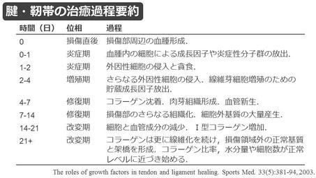 豊田市の接骨院 おおつか接骨院 アキレス腱断裂保存療法 スライド2