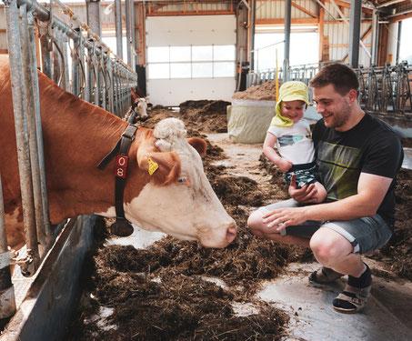 Kinder beim Kühe füttern im Stall