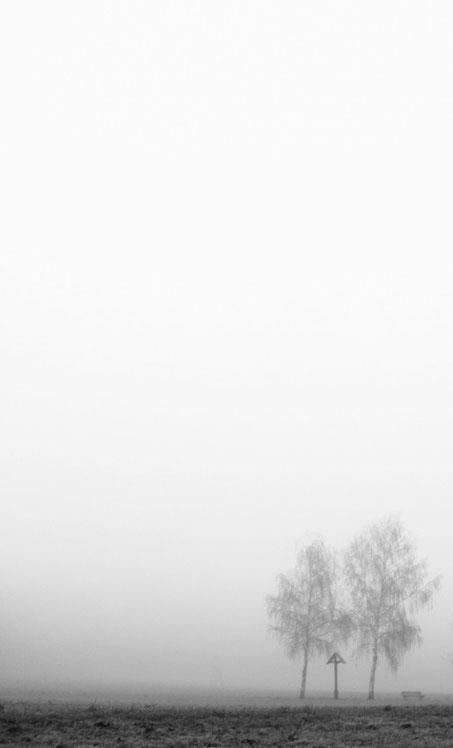 Behind the fog