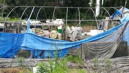 パイプハウスを解体、撤去、茨城県かすみがうら市の不用品回収業者