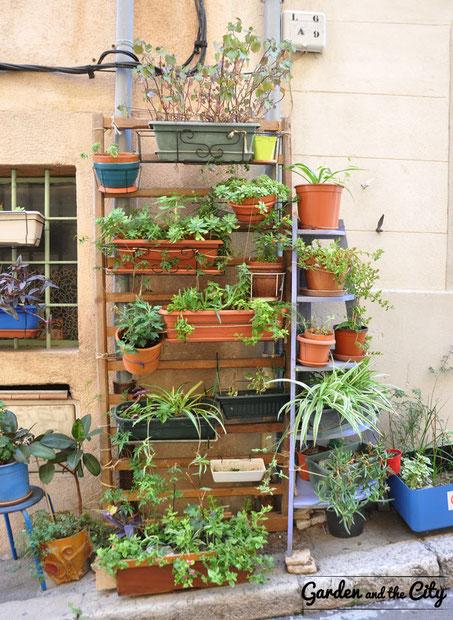 Mur végétal DIY façon Quartier du Panier à Marseille