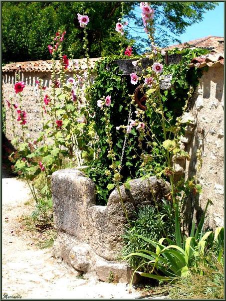 Ancien puits au détour d'une ruelle à Talmont-sur-Gironde, Charente-Maritime