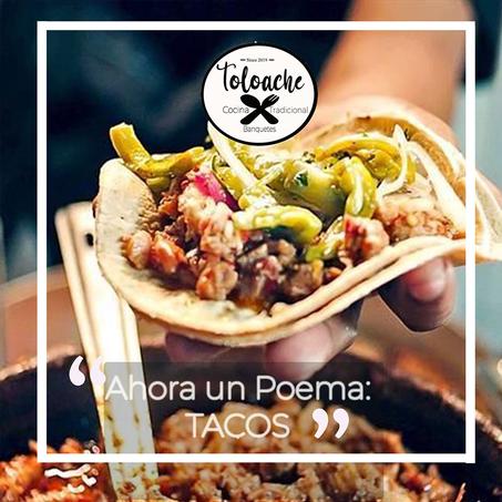 Logotipo | Toloache | Taquizas de guisado a domicilio en Cuernavaca Morelos