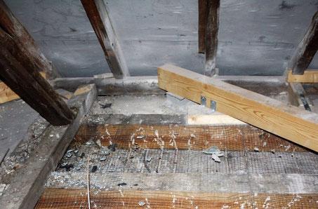 Besichtigung der Dachkonstruktion: Die maroden Balken des Nordflügels