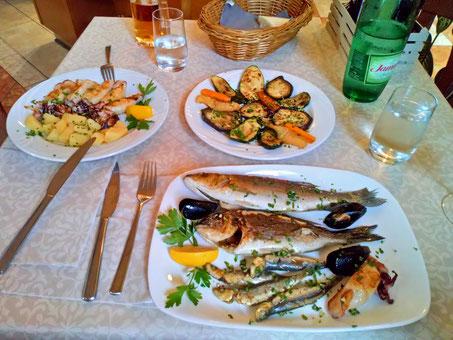 Fisch, Fisch, Fisch! 🦀🐡🐠