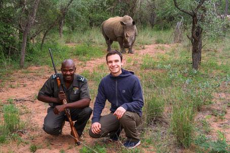 Ganz nahe am Nashorn im Marakele Nationalpark