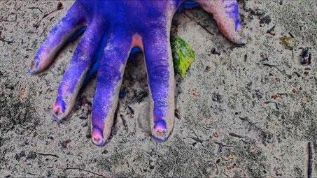 2 BleueBlue, série Monochrome animal 2010, extrait de vidéo.
