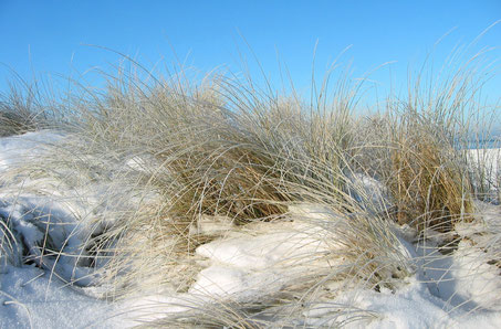 Weiße Winterwelt, Strand im Winter, Usedom