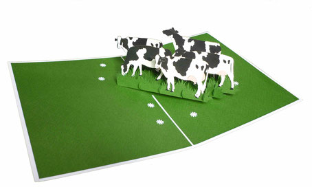 Carte pop-up vaches dans le pré