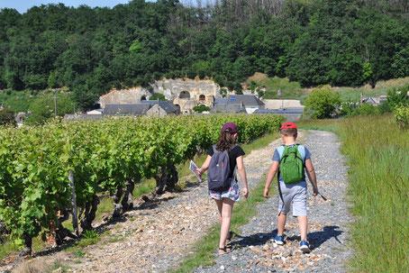 découverte-vignes-ferme-primaire-atelier-enfants-classe-scolaire-sortie-insolite-vignoble-Vouvray-Tours-Amboise-Touraine-Vallee-Loire-Rendez-Vous-dans-les-Vignes-Myriam-Fouasse-Robert