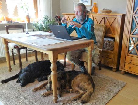 Mann sitzt am Computer und Hund an seiner Seite