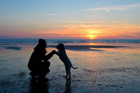 Hund mit Frauchen bei Sonnenuntergang im Watt