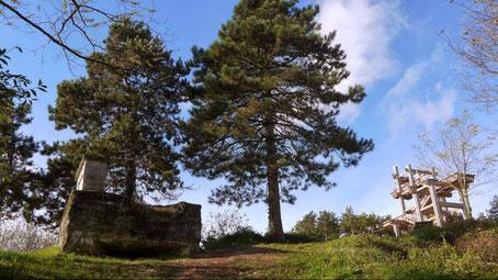 Tour observatoire du plateau de Californie