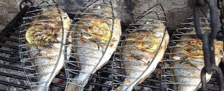 chillfood entdeckt grillgitter für fisch, gemüse und fleisch