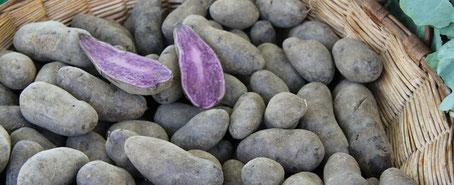 chillfood entdeckt alte kartoffelsorten