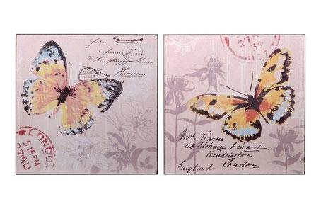 Cuadro de mariposa y texto