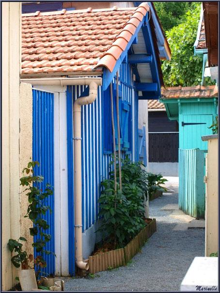 Une ruelle typique du Village de L'Herbe, Bassin d'Arcachon (33)