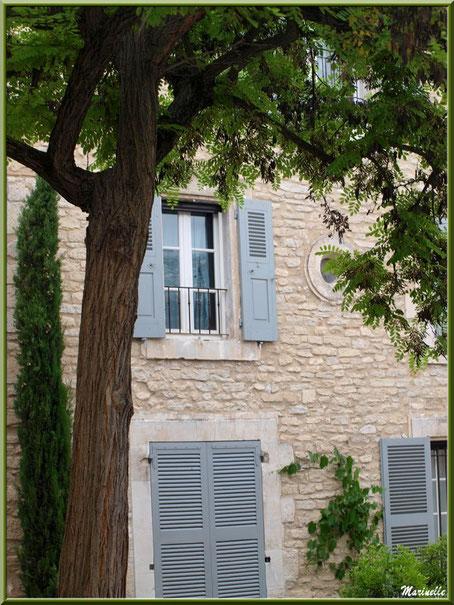Façade ancienne ombragée - Goult, Lubéron - Vaucluse (84)
