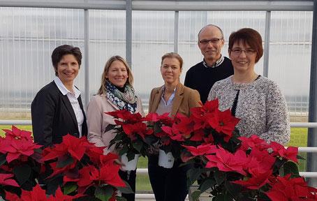 Andrew Gallik gewährte den Regionalmanagerinnen jahreszeitgemäß einen Blick in das Weihnachtsstern-Versuchsgewächshaus im Gartenbauzentrum Straelen.