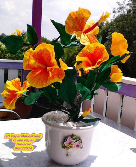 Crepe Paper Flowers - Hibiscus