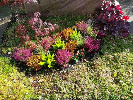 Grabpflege - Winterbepflanzung