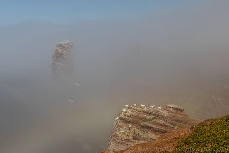 Nebel an der Langen Anna