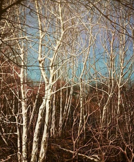 Waldansicht     1,20 m 1,00 m     Acryl auf Leinwand  /  acrylic on canvas