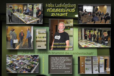 Irrweg Pestizide Ausstellung und Vortrag, Fotos und Collage S. Beyer