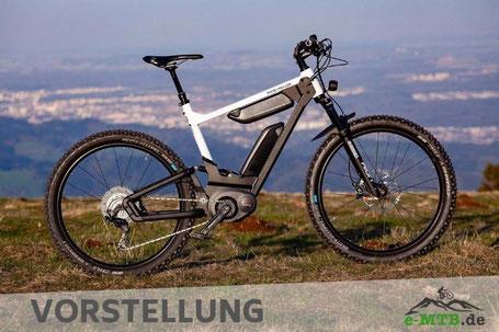 Bike-Vorstellung Riese & Müller Delite mountain 2019