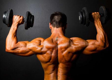 Produkte, welche dich im Muskelaufbau unterstützen werden.