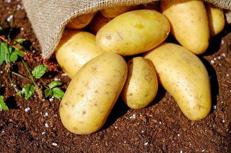 Pommes de terre - commande en ligne