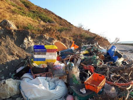 ramassage de déchets au Havre
