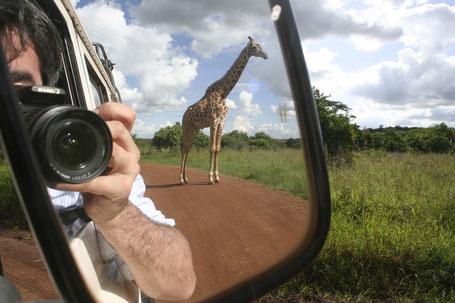 Unterwegs in Kenia