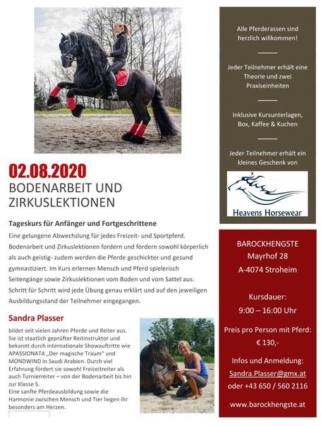 Kurs Bodenarbeit und Zirkuslektionen am 02.08.2020 mit Sandra Plasser