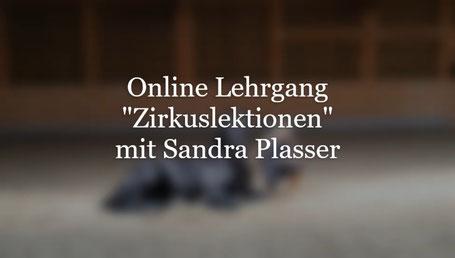 Vorschau Online Kurse Zirkuslektionen