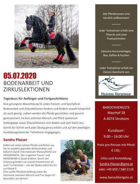 Lehrgang Bodenarbeit und Zirkuslektionen 05.07.2020 mit Sandra Plasser