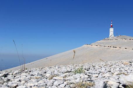 Der markante, komplett baumlose Gipfel des Mont Ventoux (1.912m) im gleichnamigen Weinanbaugebiet.