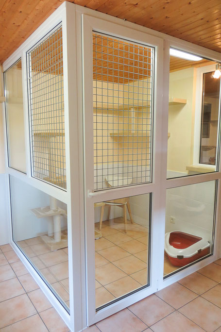 Dieses Apartment eignet sich für 1 -2 Katzen, die aus einem Haushalt stammen.