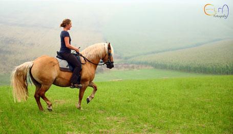 Anna und ihr Pferd bei einem Ritt auf der Wiese